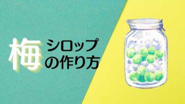 手作り梅シロップ