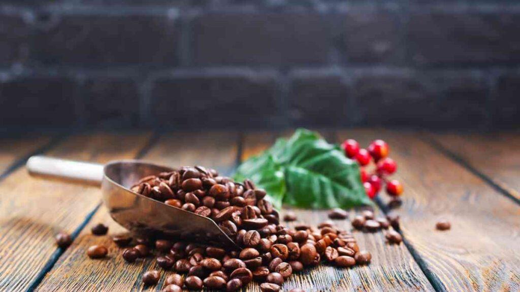 コーヒー豆は鮮度が命