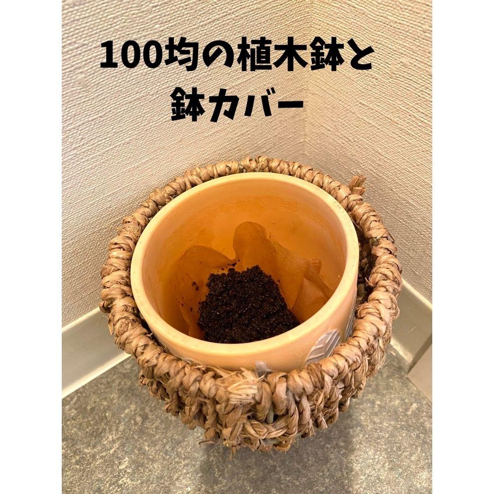 コーヒーかすの再利用は意外に面倒?乾燥のコツや濡れたまま使う方法も