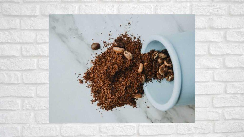 コーヒーかす カビ